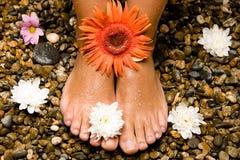 Füße auf Steinen mit Blumen Lizenzfreie Stockbilder