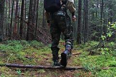 Füße in den Schuhen, die in Wald treten Stockfotos