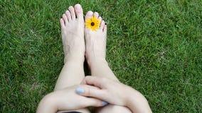 Füße der Frau auf Gras mit gelber Blume auf Wiese HD-Videobewegung stock video