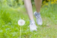 Füße einer laufenden Frau Lizenzfreies Stockfoto