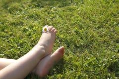 Füße eines kleinen Mädchens mit Gänseblümchen zwischen ihren Zehen Stockbild