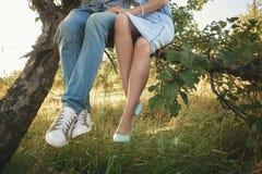 Füße eines Paares, das auf einem Baum in einem Apfelgarten sitzt Lizenzfreies Stockfoto