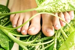 Füße mit pedicure stockbild