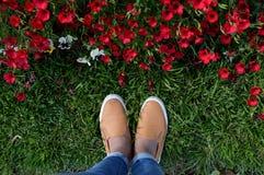 Füße und Blumen Stockfoto
