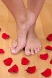 Füße und Blumenblätter Stockbild