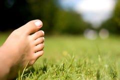 Füße und Gras. Lizenzfreie Stockfotos