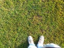 Füße und Gras Stockfotografie