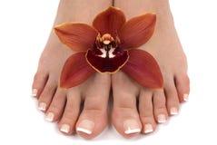 Füße und Orchidee lizenzfreies stockfoto