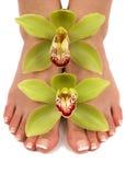 Füße und Orchideen stockfotos