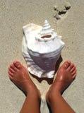 Füße und Shell Lizenzfreie Stockfotografie