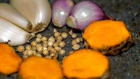 Führen Sie Blick des Gewürze bestandenen Korianders, Knoblauch, Zwiebel einzeln auf gelbwurz Stockbilder