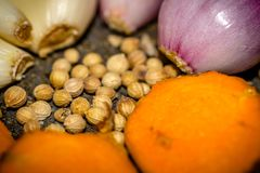 Führen Sie Blick des Gewürze bestandenen Korianders, Knoblauch, Zwiebel einzeln auf gelbwurz Lizenzfreie Stockfotografie