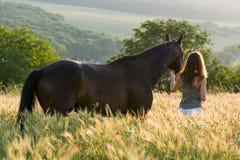 Führendes braunes Pferd des Mädchens Lizenzfreie Stockfotos