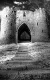 Führung bis zu gespenstischem Schloss Stockbild