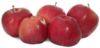 Fünf Äpfel lizenzfreie stockbilder