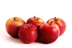 Fünf Äpfel Stockfotografie