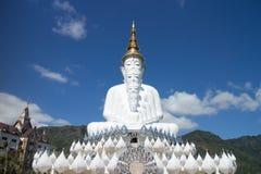 Fünf Buddha Stockfotografie