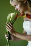 Fünf Callas Stockfoto