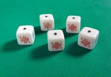 Fünf einer Art auf Poker-Würfeln Lizenzfreie Stockfotografie