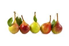 Fünf frische süße Birnen in der Linie Stockfotos