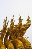 Fünf goldene Schlangen Stockbilder