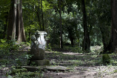 Fünf-köpfige Nagastatue in einem Angkorian ruiniert Bereich Lizenzfreies Stockbild