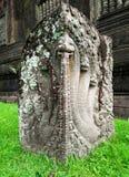 Fünf-köpfiger Naga am Bottich Phou ruiniert Basis während der grünen Jahreszeit in Champasak, Laos Lizenzfreie Stockfotos