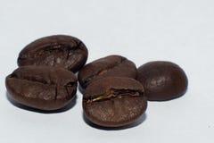 Fünf Kaffeebohnen Makro Stockbild