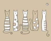 Fünf Katzen Lizenzfreies Stockfoto