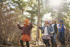 Fünf Kleinkinder, die zusammen in einem Wald, niedrige Winkelsicht spielen stockfoto