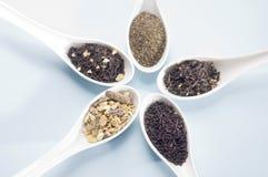 Fünf Löffel mit Tee stockfotos