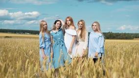 Fünf Mädchen mit dem langen blonden Haar auf einem Gebiet des goldenen Weizens Lächeln, die Kamera betrachtend stock video