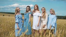 Fünf Mädchen mit dem langen blonden Haar auf einem Gebiet des goldenen Weizens Lächeln, die Kamera betrachtend stock footage