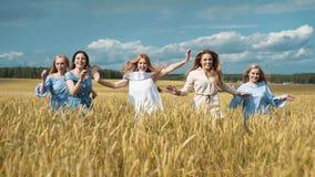 Fünf Mädchen mit dem langen blonden Haar, das über das Weizenfeld läuft Schönes, gesundes Haar stock video footage