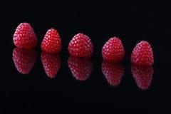 Fünf rote Himbeeren gewinkelt auf schwarzem Hintergrund Stockfotografie