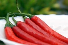 Fünf rote Paprikas Stockfotos