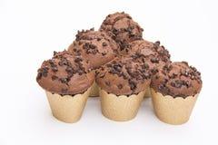 Fünf Schokoladen-Muffins Lizenzfreie Stockfotos