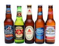 Fünf sortierten kalte Biere stockfotografie