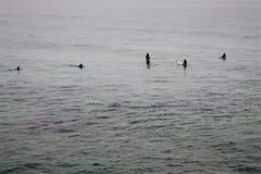 Fünf Surfer, die auf eine Welle warten stockfotografie