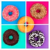 Fünf verschiedene Schaumgummiringe auf Draufsicht des hellen mehrfarbigen Hintergrundes stockfotos