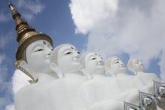 Fünf weiße Buddha-Statuen, die wohle Ausrichtung vor blauem Himmel sitzen und wunderbaren attraktiven Spiegel verzieren stockbild