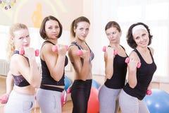 Fünf weibliche kaukasische Athleten, die mit Barbrells stehen lizenzfreie stockfotografie