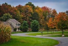 Für immer Herbst Lizenzfreie Stockfotografie
