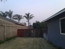 Für Palmen in Kalifornien-Hinterhof Lizenzfreie Stockfotografie