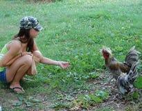 Fütterungshühner Stockfotografie