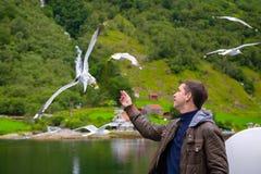 Fütterungsseemöwen des Mannes Fliegen über der Fähre lizenzfreie stockfotos
