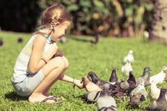 Fütterungstauben des kleinen Mädchens im Park Stockfotos