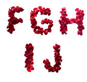 F -由红色瓣做的J上升了 图库摄影