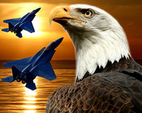 F-15 Falcon and Bald Eagle stock photos
