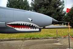 Реактивный истребитель фантома F-4 Стоковые Изображения RF